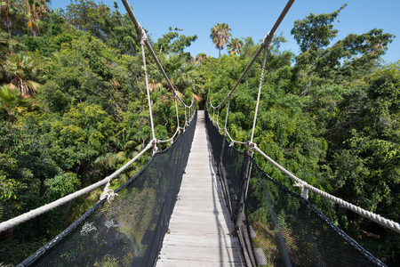 Suspension bridge over tropical forest Stock Photo