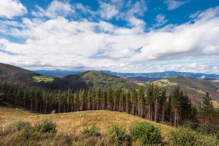 Vizcaya forest and mountain landscape, Basque country, Spain. Foto de archivo - 108537762