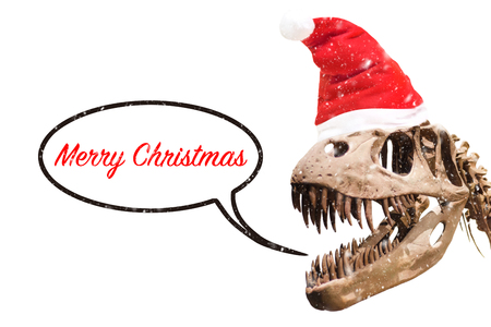 Tyrannosaurus Rex head with Christmas hat and snow flakes. thought ballon with merry christmas text on white isolated.