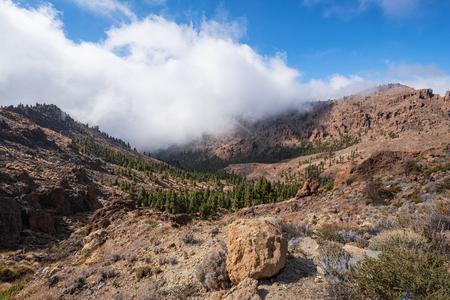 Beautiful rocky volcanic landscape in Teide national park in Tenerife, Canary islands.