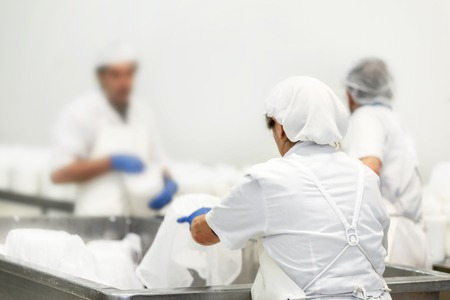 Unrecognizable workers in a food processing plant. Cheese dairy production process. 스톡 콘텐츠