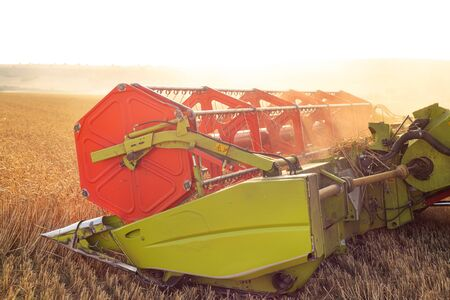 Panorama of Combine harvester close up. Combine harvester harvesting wheat at sunset. 写真素材 - 128872185