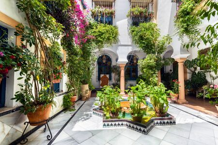 Cordoba, Spain - May 21, 2019: Typical Andalusian Courtyard decorated with Flowers and pots. Editorial