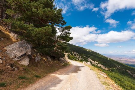 Rural pathway in moncayo mountain, Aragon region, Spain. Natural environment in summer season.