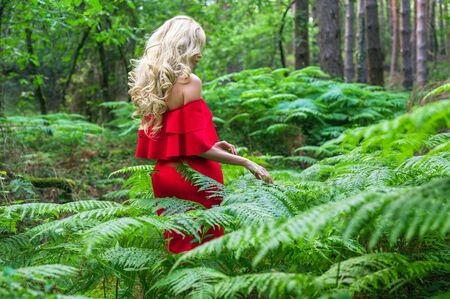 Back view of a Beautiful blonde girl in a chic red dress touching a fern in the fairy forest. Atmosphere fantastic. Stock Photo - 150562079
