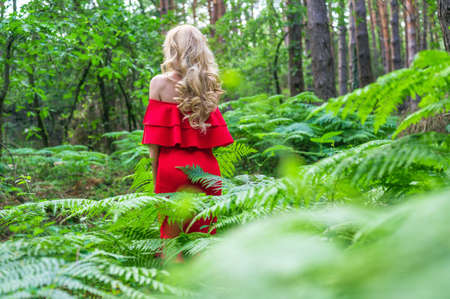Back view of a Beautiful blonde girl in a chic red dress in the fairy forest. Atmosphere fantastic.