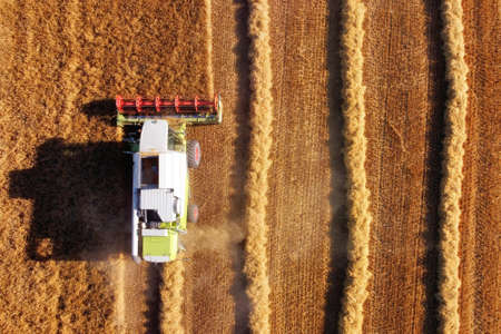 Aerial view of a Combine harvester on wheat field