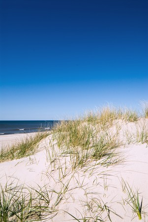 White sand and grasses next to ocean Stock Photo