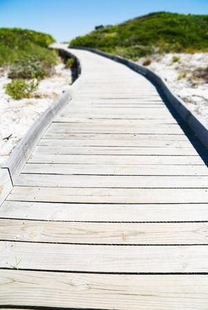 Wooden pathway through dune