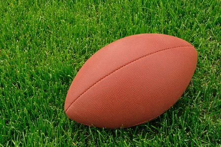 Football on a grass playing field, horizontal, copy space Stock Photo - 4984886