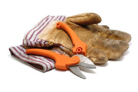 pruning shears: Pruning Shears and Leather Gloves Isolated on White