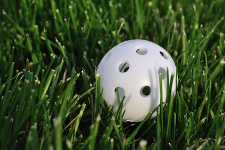 White Plastic Wiffle Perforated Golf Ball on Grass Imagens