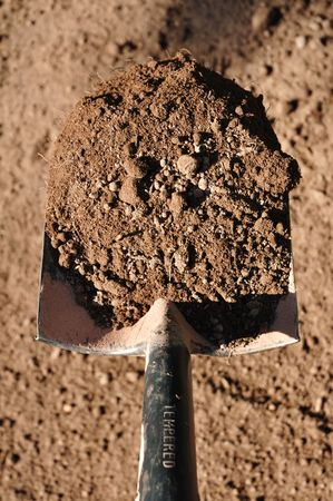 Shovel Full of Black Dirt in Vertical Format