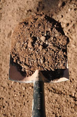 shovel in dirt: Shovel Full of Black Dirt in Vertical Format