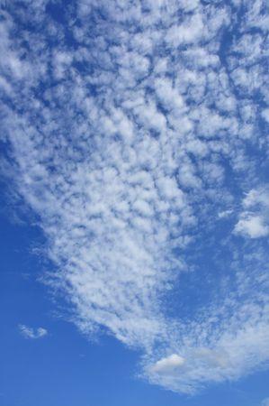 altocumulus: Altocumulus Clouds Against a Blue Sky