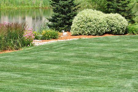 Backyard Landschappelijk met gazon en vijver Stockfoto - 8004585
