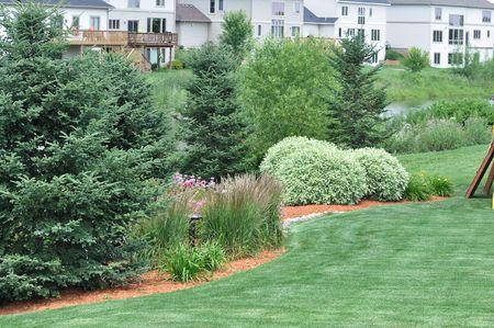 Jardin paysager avec pelouse et étang Banque d'images - 8098473