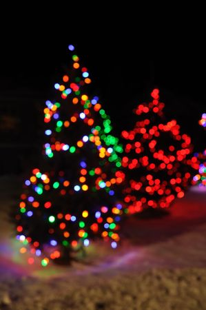 Colorful Defocused Christmas Lights of Trees photo