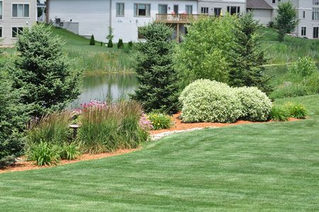 Backyard Landscaping with Lawn and Pond photo