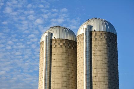 altocumulus: A Pair of Farm Silos Against a Blue Sky with Altocumulus Clouds