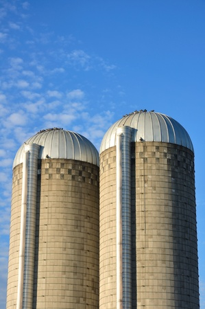 altocumulus: A Pair of Farm Silos Against a Sky with Altocumulus Clouds