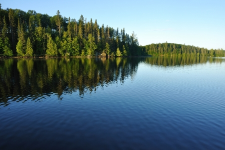Reflections on the Coniferous Forest on a Wilderness Lake Stock fotó - 8787665