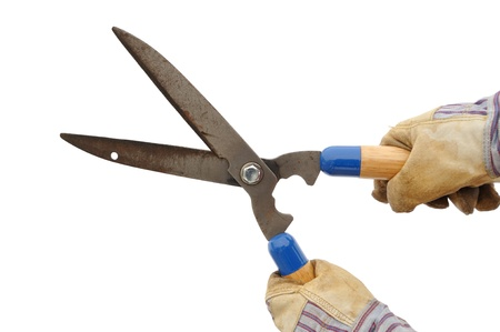 Gardener Holding a Hedge Trimmer Isolated On White Stock Photo - 9177298