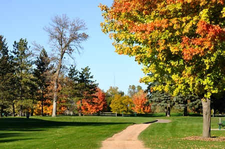 Golf Cart Path and Colorful Leaves on Maple Trees in the Fall photo