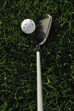White Plastic Wiffle Ball and Golf Club on Grass