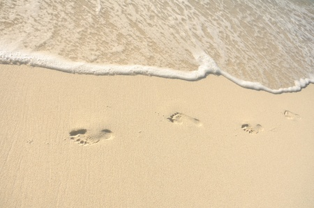 shorelines: Footprints in Sand on Beach on a Sunny Day