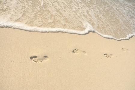 shoreline: Huellas en la arena de la playa en un d�a soleado Foto de archivo