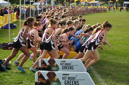 ST. PAUL, MN - SEPTEMBER 25 : The start of the Roy Griak Invitational Cross Country Meet with teams from numerous Minnesota high schools participating on September 25, 2010 in St. Paul, MN 新聞圖片