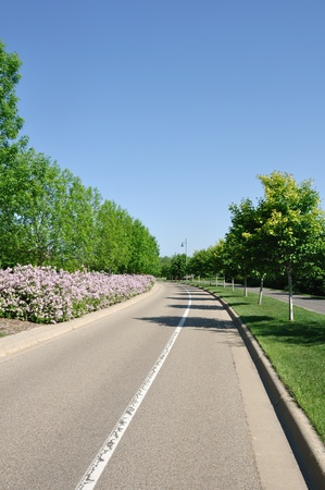 median: A Residential Street With A Landscaped Median Stock Photo