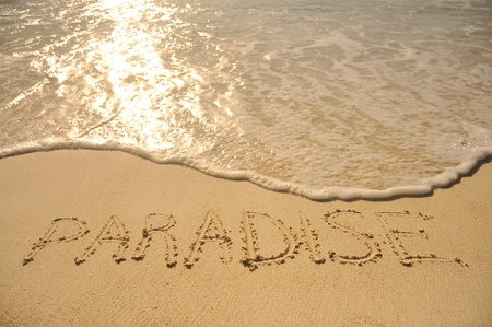 sand writing: The Word Paradise Written in the Sand on a Beach