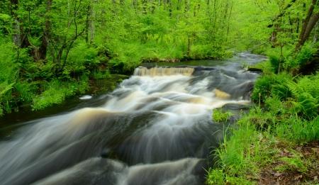 minnesota woods: Wolf Creek Flowing Through Banning State Park in Minnesota Stock Photo