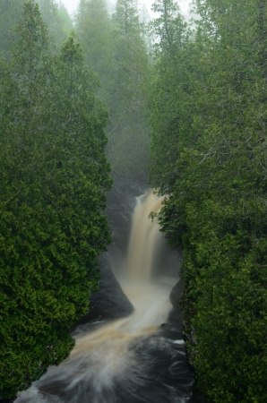 cedars: Cedar Trees and Waterfall on the Cascade River,  Cascade River State Park in Minnesota Stock Photo