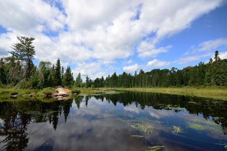 nature scenery: Reflections of Clouds on a Wilderness River Stock Photo