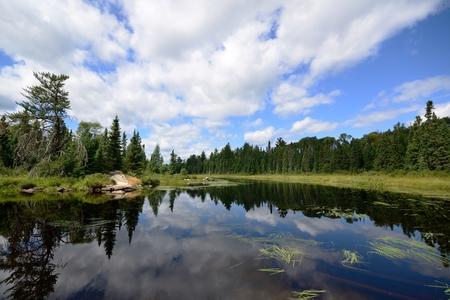 Reflexionen von Wolken auf einem Wildnis-Fluss Standard-Bild - 51326239
