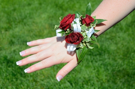 Rote Blumen (Rosen) auf HandgelenkCorsage für Prom Standard-Bild - 51894900