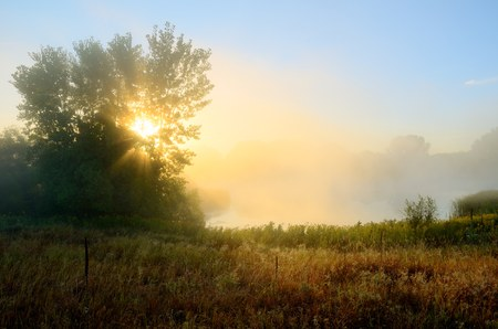 crepuscular: Crepuscular Rays Through the Fog Near a Pond by the Rice Creek North Regional Trail in Shoreview, Minnesota