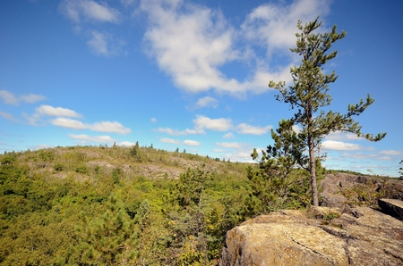 minnesota woods: View from Elys Peak Near Duluth with Pine Tree Stock Photo