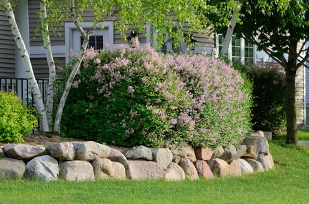 Landscaping and Rock Retaining Wall at a Residential Home Standard-Bild
