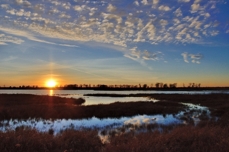 秋の湿地と池に沈む夕日