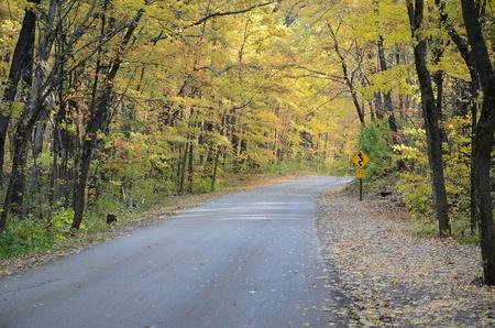 秋の色に沿って、農村道路バラブー、ウィスコンシン州の近くの悪魔湖州立公園内
