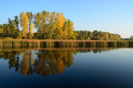 秋の穏やかな朝の湖畔に反映される色