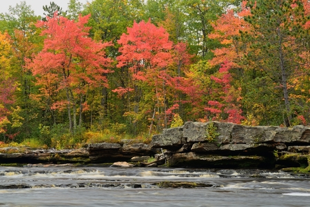 minnesota woods: Fall Colors Along the Kettle River in Banning State Park near Sandstone, Minnesota