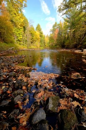 Fall Colors Along the Pine River Near Rutledge, Minnesota Standard-Bild