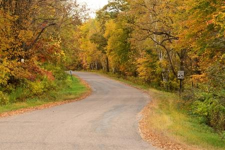 中西部の田舎の道沿いの紅葉
