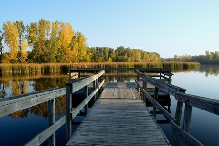 秋の色と穏やかな朝に釣りドック 写真素材