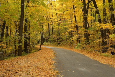 Autumn Colors Along a Rural Road in Devils Lake State Park near Baraboo, Wisconsin